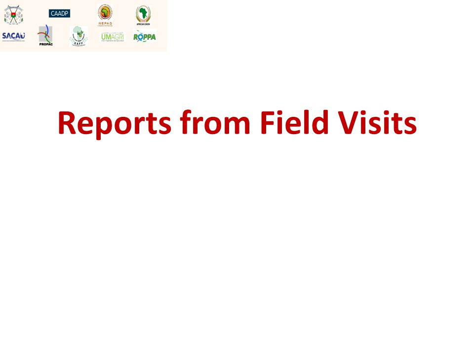 Reports from Field Visits