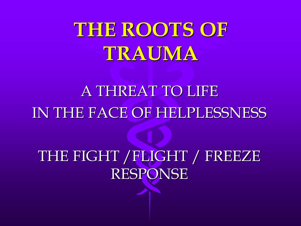 THE ROOTS OF TRAUMA A THREAT TO LIFE IN THE FACE OF HELPLESSNESS THE FIGHT /FLIGHT / FREEZE RESPONSE