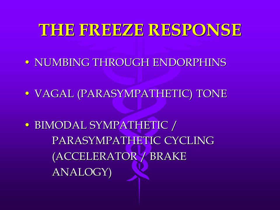THE FREEZE RESPONSE NUMBING THROUGH ENDORPHINSNUMBING THROUGH ENDORPHINS VAGAL (PARASYMPATHETIC) TONEVAGAL (PARASYMPATHETIC) TONE BIMODAL SYMPATHETIC /BIMODAL SYMPATHETIC / PARASYMPATHETIC CYCLING (ACCELERATOR / BRAKE ANALOGY)