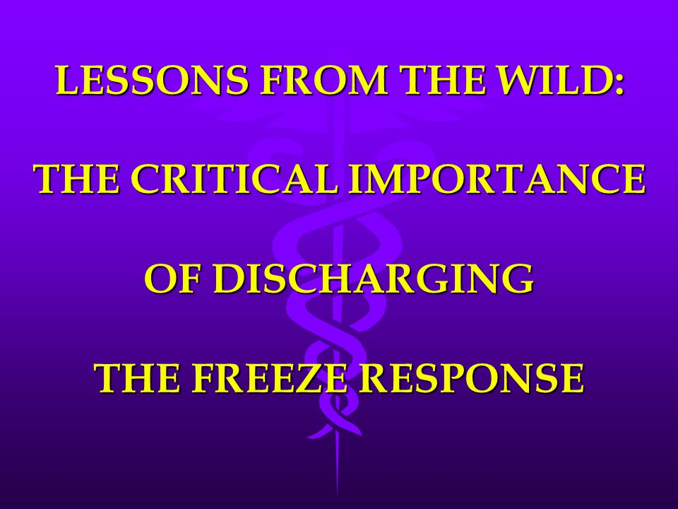 LESSONS FROM THE WILD: THE CRITICAL IMPORTANCE OF DISCHARGING THE FREEZE RESPONSE