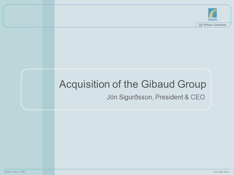 Copyright OssurGibaud Group 2006 12 Sales by markets Q3 2006Össur & Gibaud