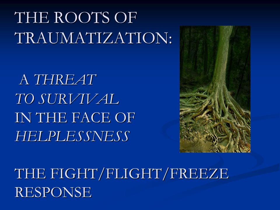 THE ROOTS OF TRAUMATIZATION: A THREAT TO SURVIVAL IN THE FACE OF HELPLESSNESS THE FIGHT/FLIGHT/FREEZE RESPONSE