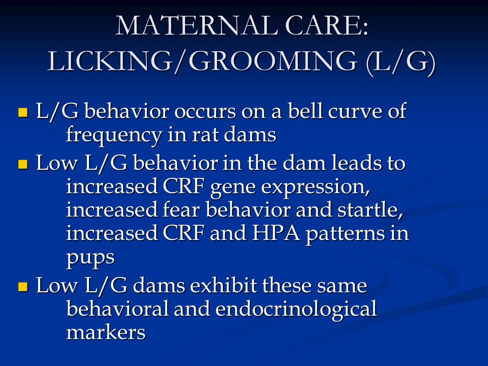 MATERNAL CARE: LICKING/GROOMING (L/G) L/G behavior occurs on a bell curve of frequency in rat dams L/G behavior occurs on a bell curve of frequency in