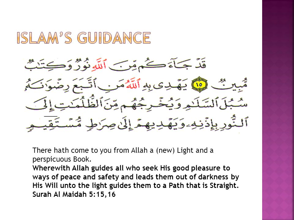 There hath come to you from Allah a (new) Light and a perspicuous Book.