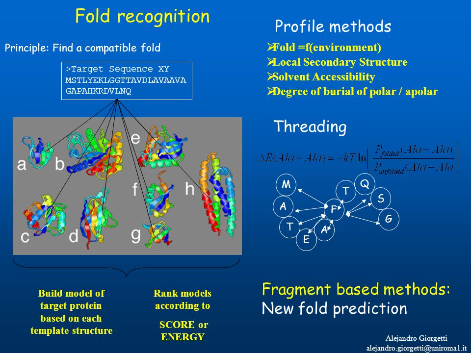 Alejandro Giorgetti alejandro.giorgetti@uniroma1.it Fold recognition Principle: Find a compatible fold >Target Sequence XY MSTLYEKLGGTTAVDLAVAAVA GAPAHKRDVLNQ Build model of target protein based on each template structure Rank models according to SCORE or ENERGY Profile methods Threading M A T E A F T S G Q  Fold =f(environment)  Local Secondary Structure  Solvent Accessibility  Degree of burial of polar / apolar Fragment based methods: New fold prediction
