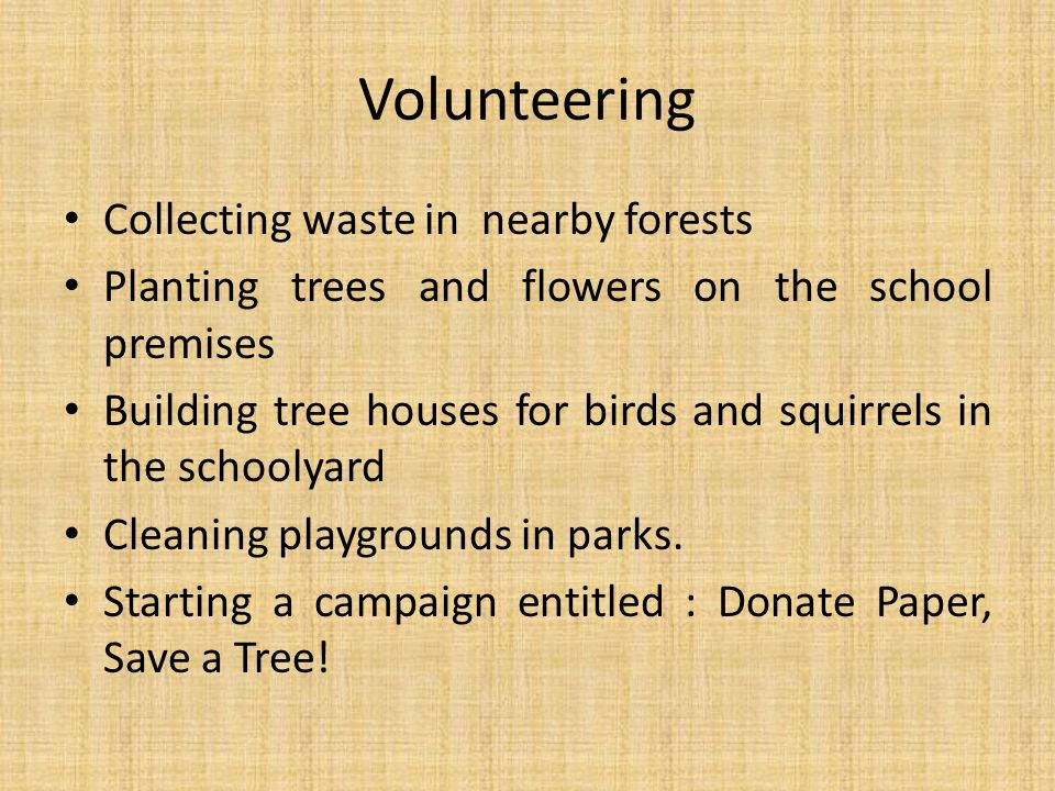 Volunteering Collecting waste in nearby forests Planting trees and flowers on the school premises Building tree houses for birds and squirrels in the schoolyard Cleaning playgrounds in parks.