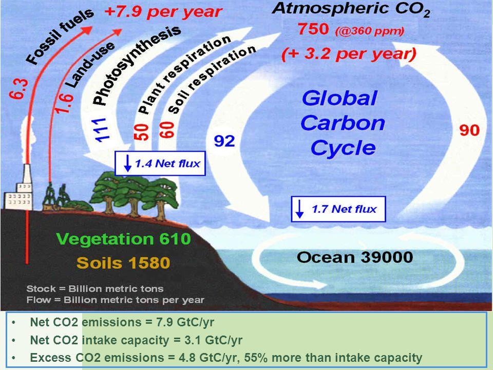 Net CO2 emissions = 7.9 GtC/yr Net CO2 intake capacity = 3.1 GtC/yr Excess CO2 emissions = 4.8 GtC/yr, 55% more than intake capacity