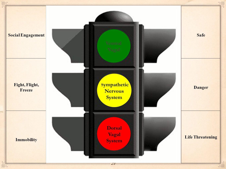 29 Social Engagement Fight, Flight, Freeze Immobility Safe Danger Life Threatening Ventral Vagal S ympathetic Nervous System Dorsal Vagal System