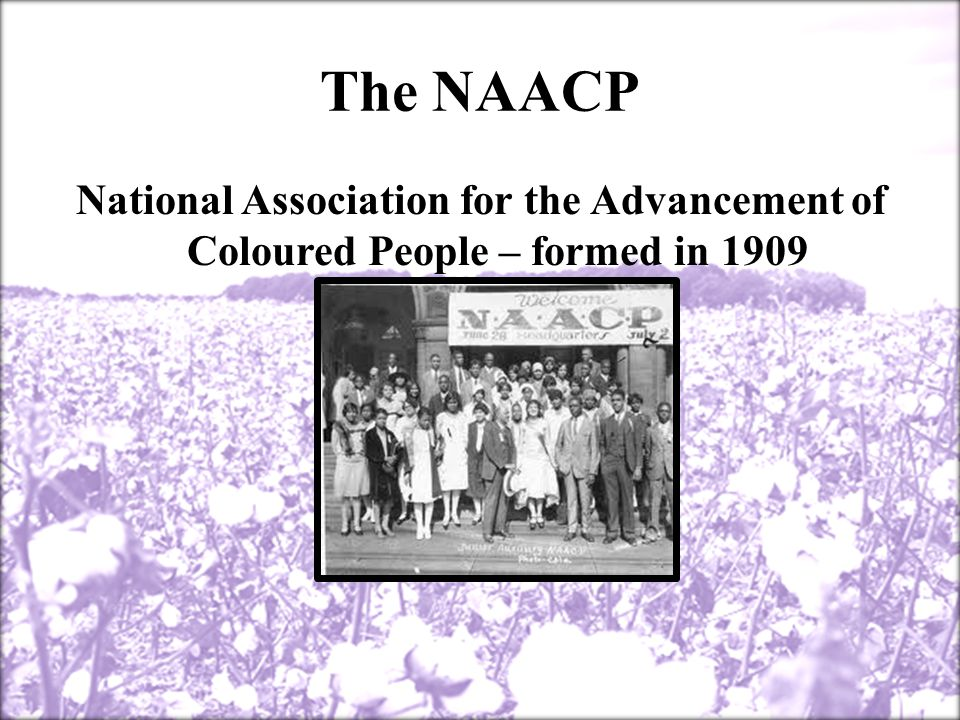 Jim Crow It shall be unlawful for a negro and white person to play together or in company with each other in any game of cards or dice, dominoes or checkers. —Birmingham, Alabama, 1930 Separate free schools shall be established for the education of children of African descent; and it shall be unlawful for any colored child to attend any white school, or any white child to attend a colored school. —Missouri, 1929 All railroads carrying passengers in the state (other than street railroads) shall provide equal but separate accommodations for the white and colored races, by providing two or more passenger cars for each passenger train, or by dividing the cars by a partition, so as to secure separate accommodations. —Tennessee, 1891