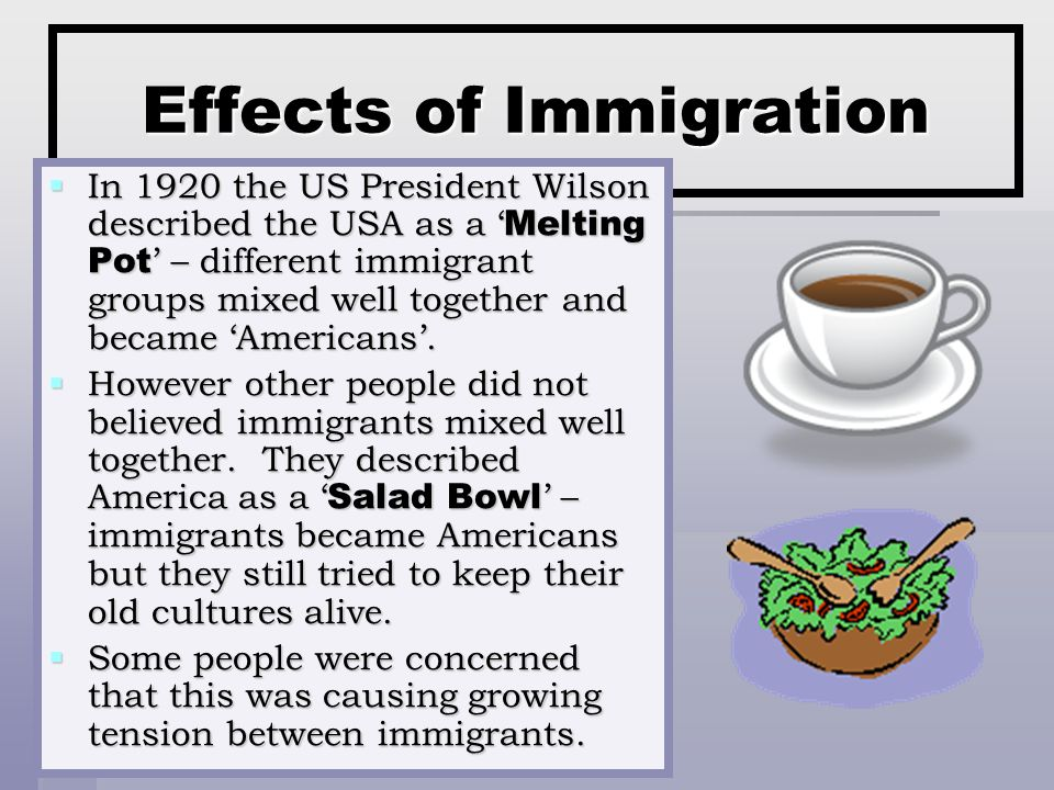 Effects of Immigration  In 1920 the US President Wilson described the USA as a ' Melting Pot ' – different immigrant groups mixed well together and became 'Americans'.
