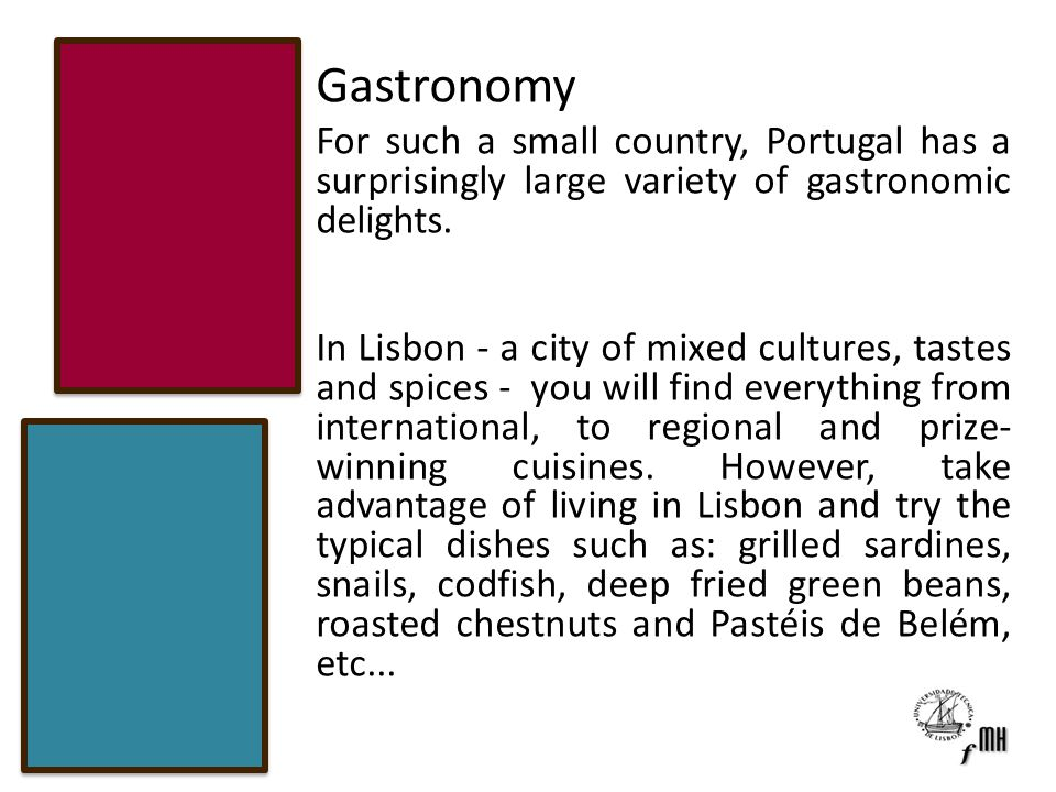 Gastronomy For such a small country, Portugal has a surprisingly large variety of gastronomic delights.