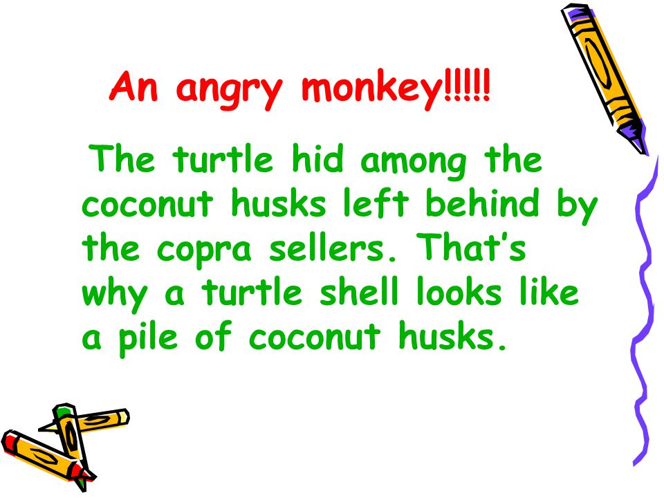 An angry monkey!!!!! The turtle hid among the coconut husks left behind by the copra sellers. That's why a turtle shell looks like a pile of coconut h
