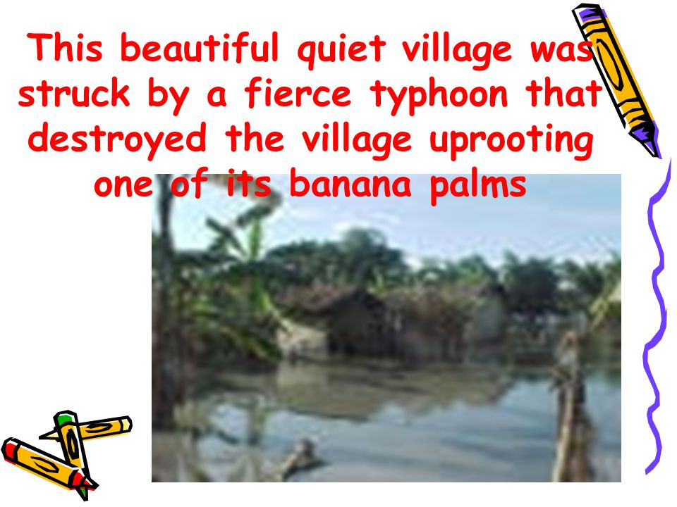 In this village there lived a monkey and the turtle who were the best of friends.