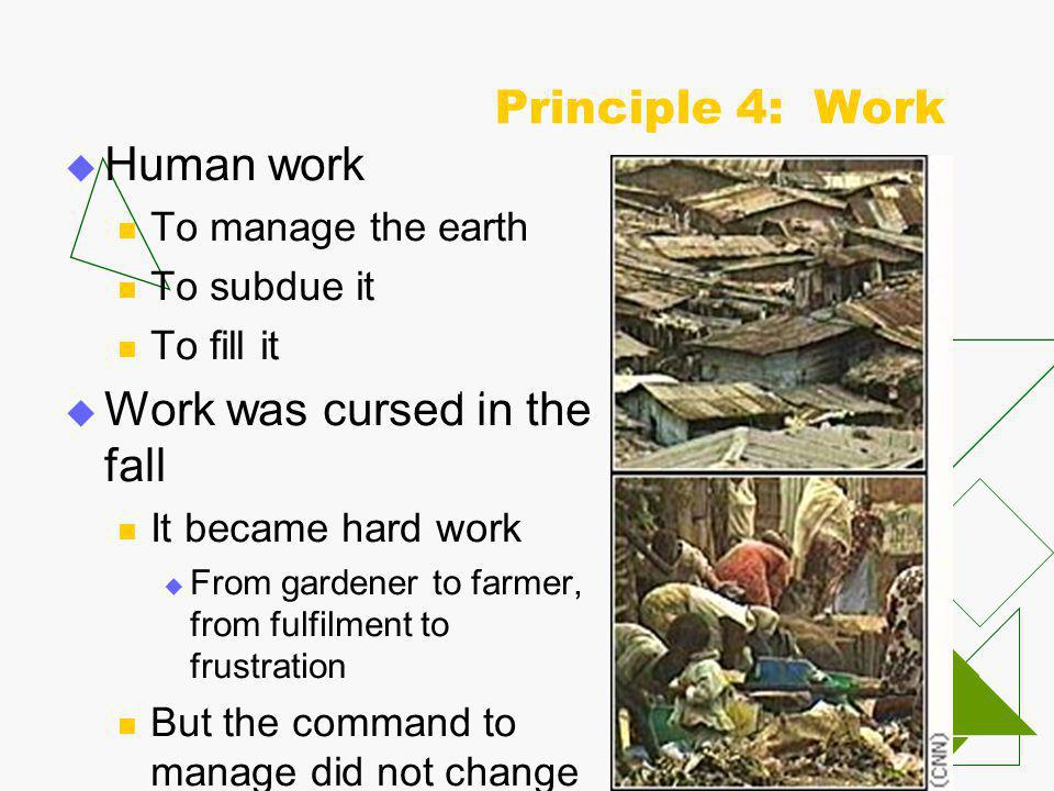 Principle 4: Work  Human work To manage the earth To subdue it To fill it  Work was cursed in the fall It became hard work  From gardener to farmer, from fulfilment to frustration But the command to manage did not change 1.What rate of interest do they charge