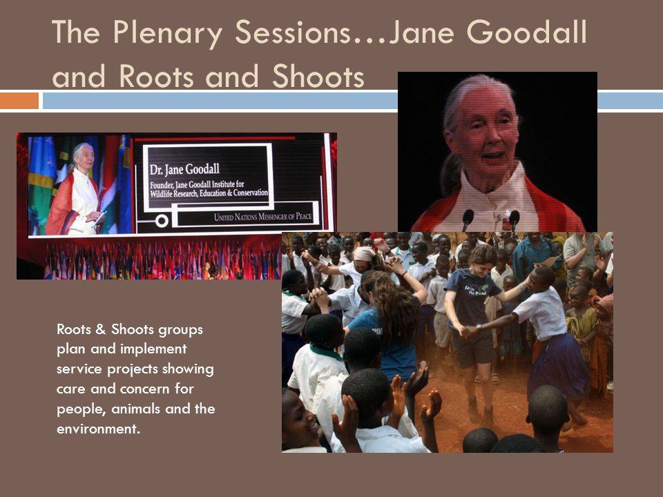 The Plenary Sessions…Jane Goodall and Roots and Shoots Roots & Shoots groups plan and implement service projects showing care and concern for people, animals and the environment.