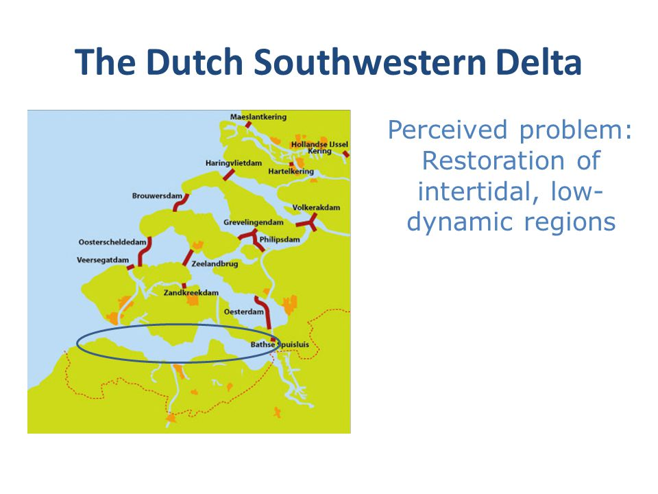 The Dutch Southwestern Delta Perceived problem: Restoration of intertidal, low- dynamic regions