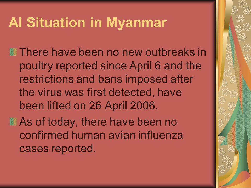 AI Situation in Myanmar There have been no new outbreaks in poultry reported since April 6 and the restrictions and bans imposed after the virus was f