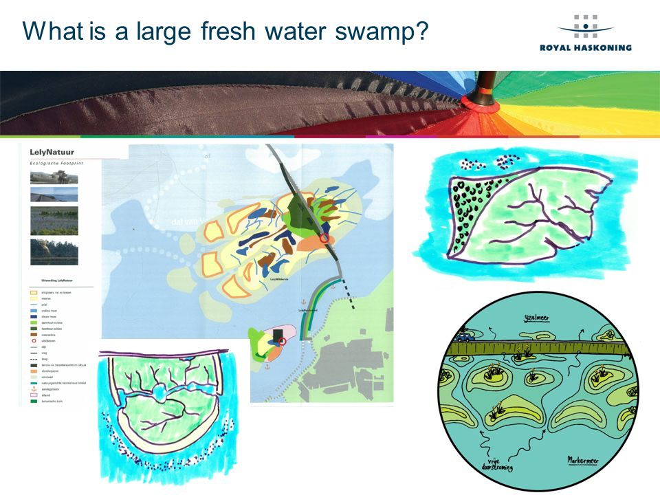 What is a large fresh water swamp