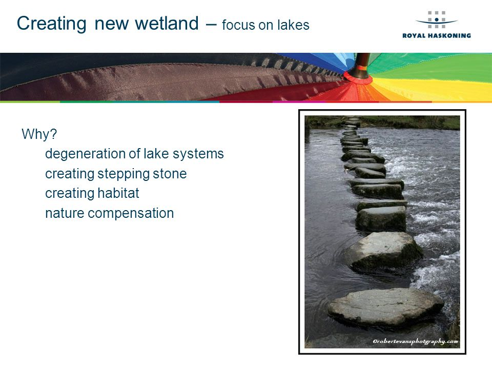 Pilot Marsh Ecology is leading but engineering is tested (because of time frame) Laboratory in Lake Marken of a few ha.