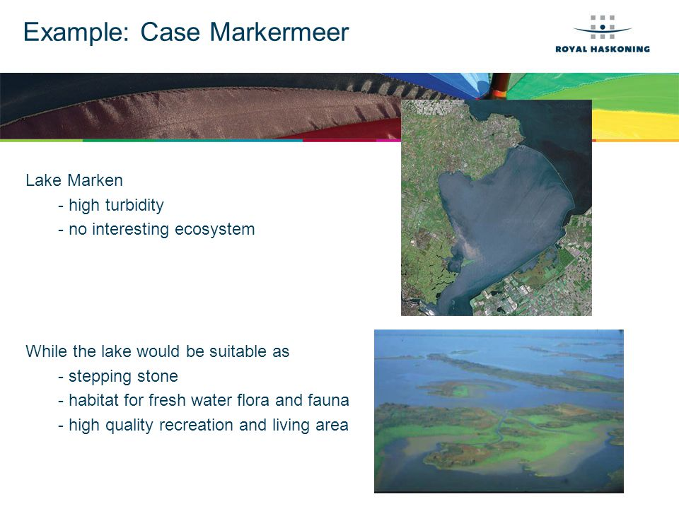 Example: Case Markermeer Lake Marken - high turbidity - no interesting ecosystem While the lake would be suitable as - stepping stone - habitat for fresh water flora and fauna - high quality recreation and living area