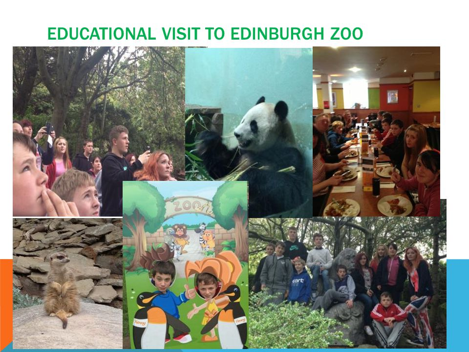 EDUCATIONAL VISIT TO EDINBURGH ZOO