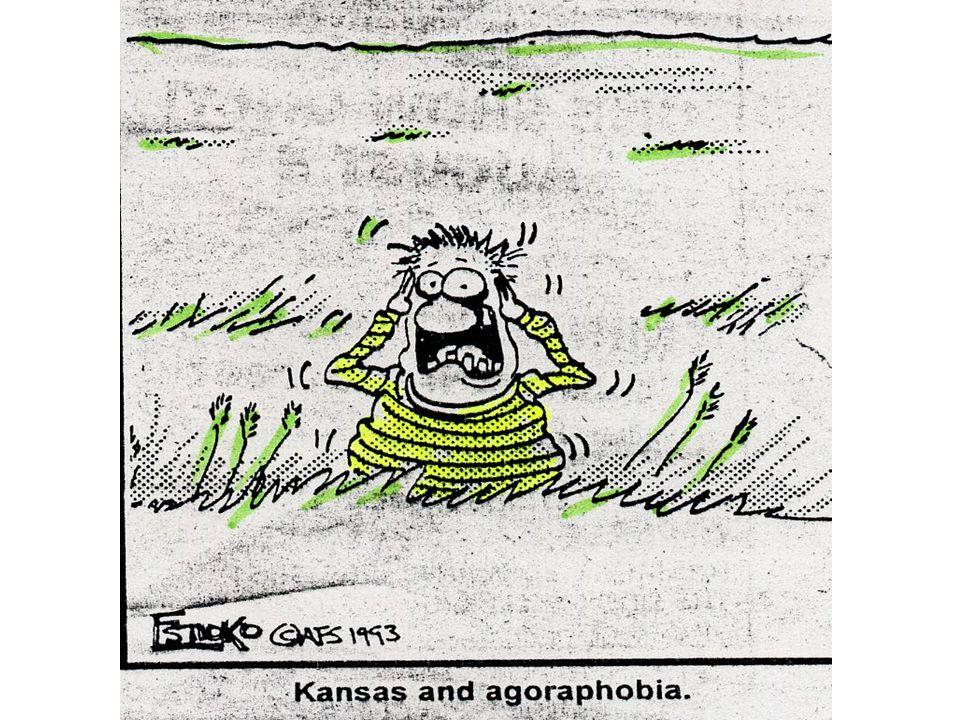 Panic Disorder Phase One: Panic Attacks Phase Two: Phobias