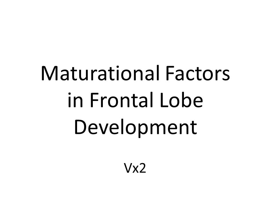 FRONTAL LOBE SYMPTOMS Difficulties Inhibiting Behavior (Impulsivity) Difficulties Inhibiting Behavior (Impulsivity) Impaired Executive Functions Impaired Executive Functions 1.