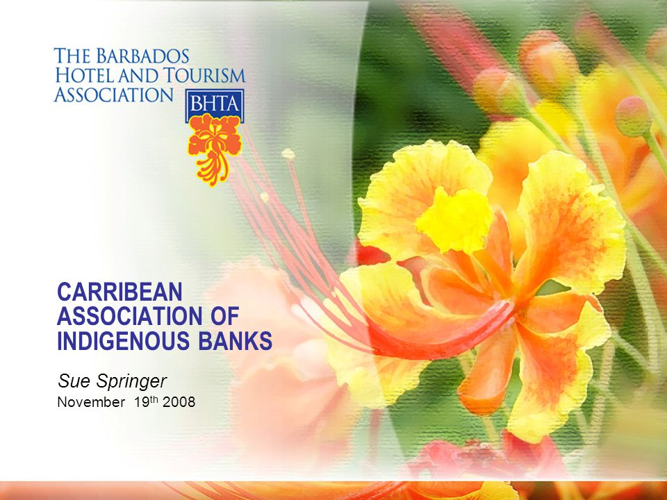 CARRIBEAN ASSOCIATION OF INDIGENOUS BANKS Sue Springer November 19 th 2008