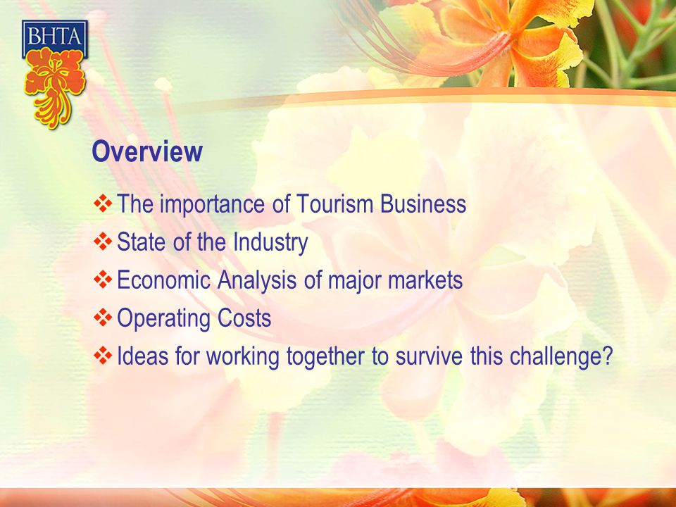 Overview  The importance of Tourism Business  State of the Industry  Economic Analysis of major markets  Operating Costs  Ideas for working together to survive this challenge?