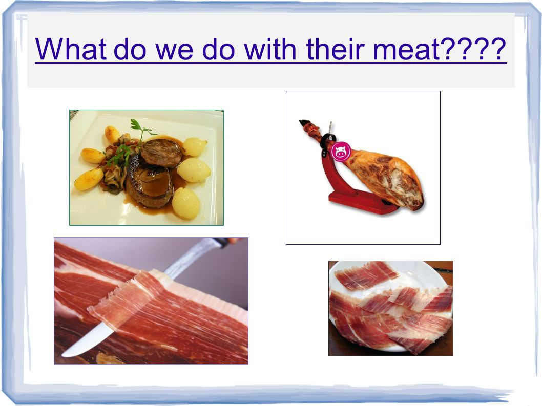 What do we do with their meat????