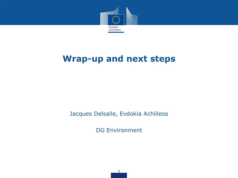 Wrap-up and next steps Jacques Delsalle, Evdokia Achilleos DG Environment 1