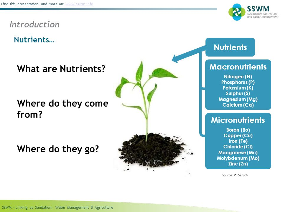 SSWM – Linking up Sanitation, Water Management & Agriculture Find this presentation and more on: www.sswm.info.www.sswm.info What are Nutrients.