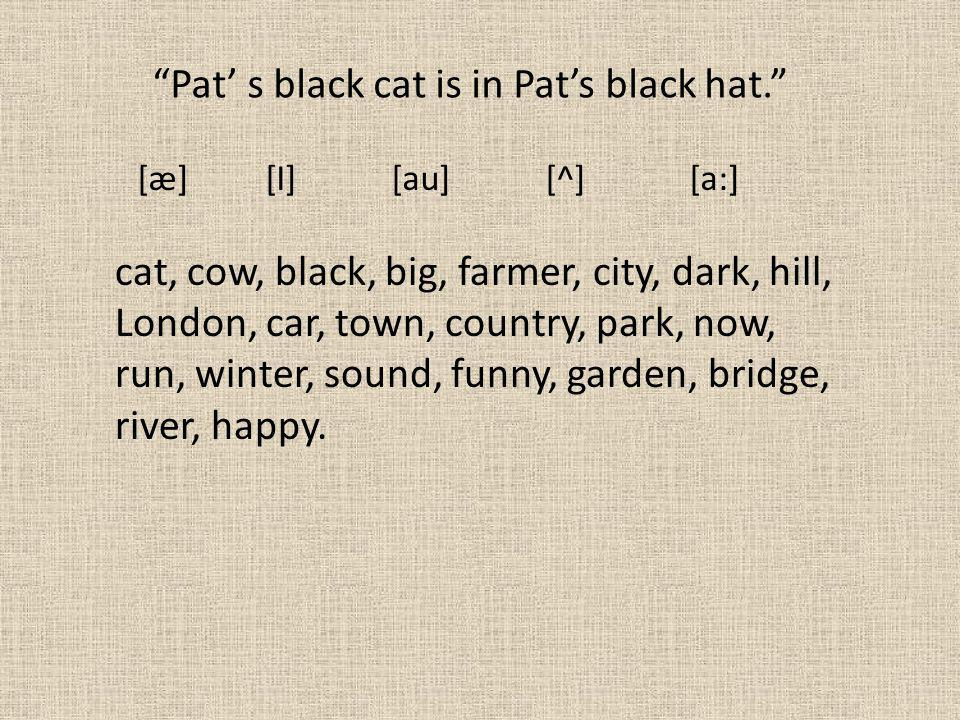 [æ] [I] [au] [^] [a:] Pat' s black cat is in Pat's black hat. cat, cow, black, big, farmer, city, dark, hill, London, car, town, country, park, now, run, winter, sound, funny, garden, bridge, river, happy.