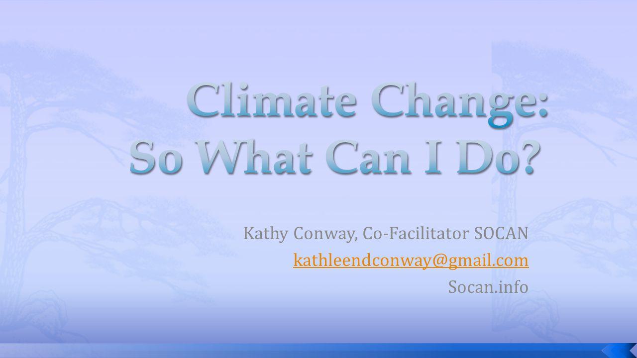 Kathy Conway, Co-Facilitator SOCAN kathleendconway@gmail.com Socan.info
