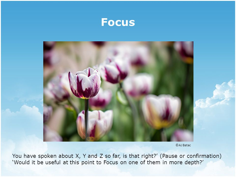 Focus ©AJ Batac You have spoken about X, Y and Z so far, is that right ' (Pause or confirmation) 'Would it be useful at this point to Focus on one of them in more depth '