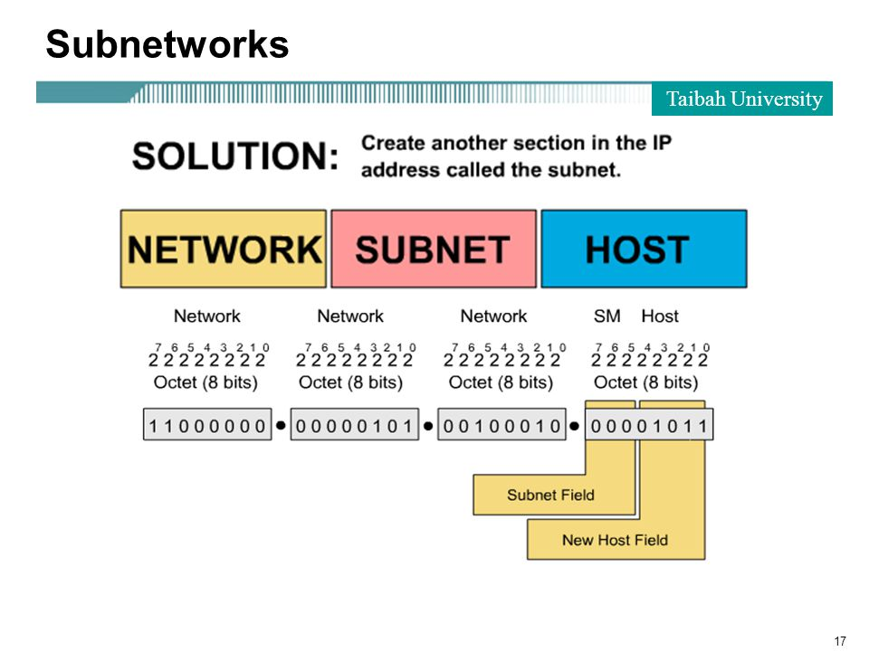 Taibah University 17 Subnetworks