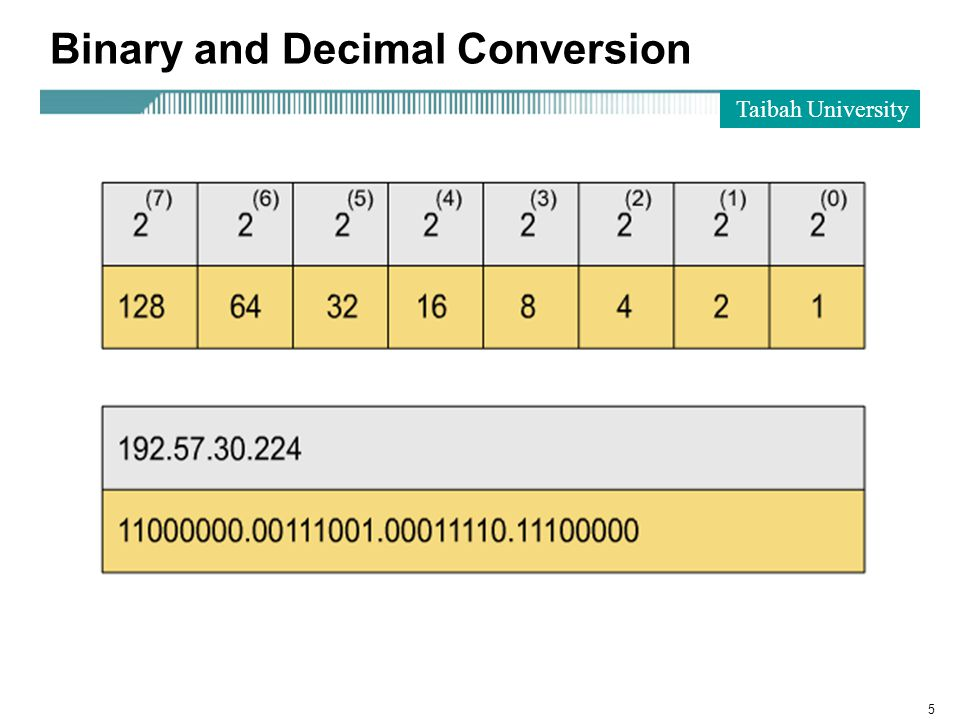 Taibah University 5 Binary and Decimal Conversion