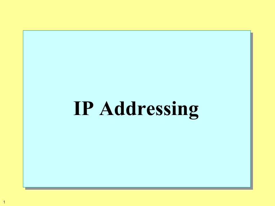 1 IP Addressing