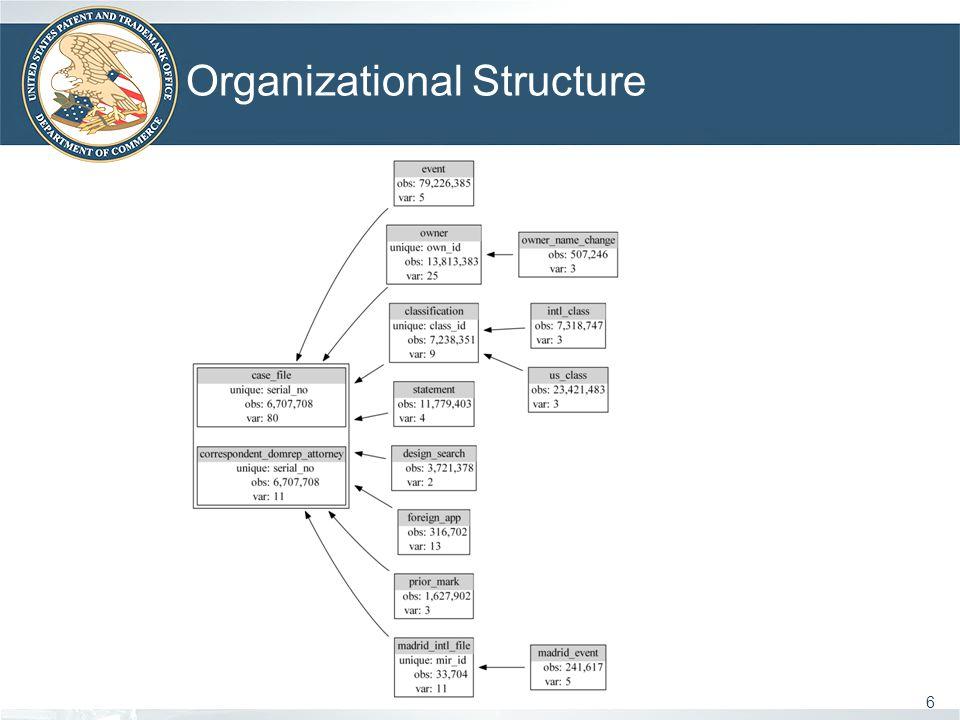 Organizational Structure 6