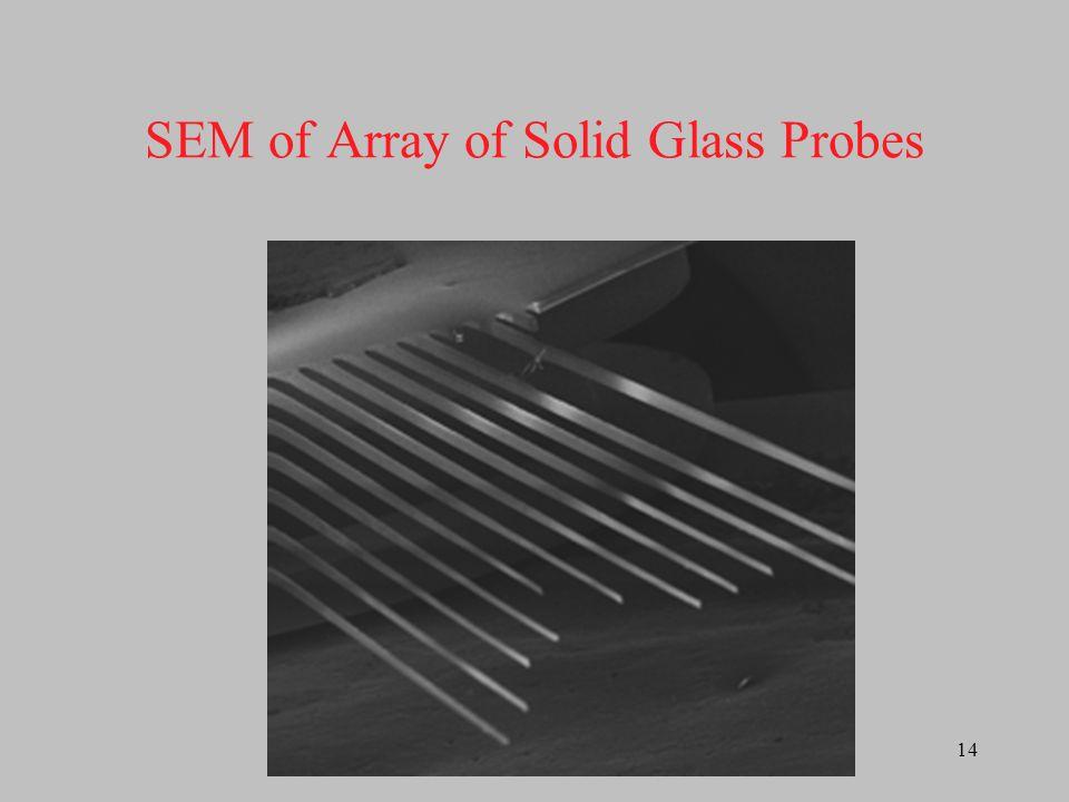 15 Proposed Microelectrode Sensor Package