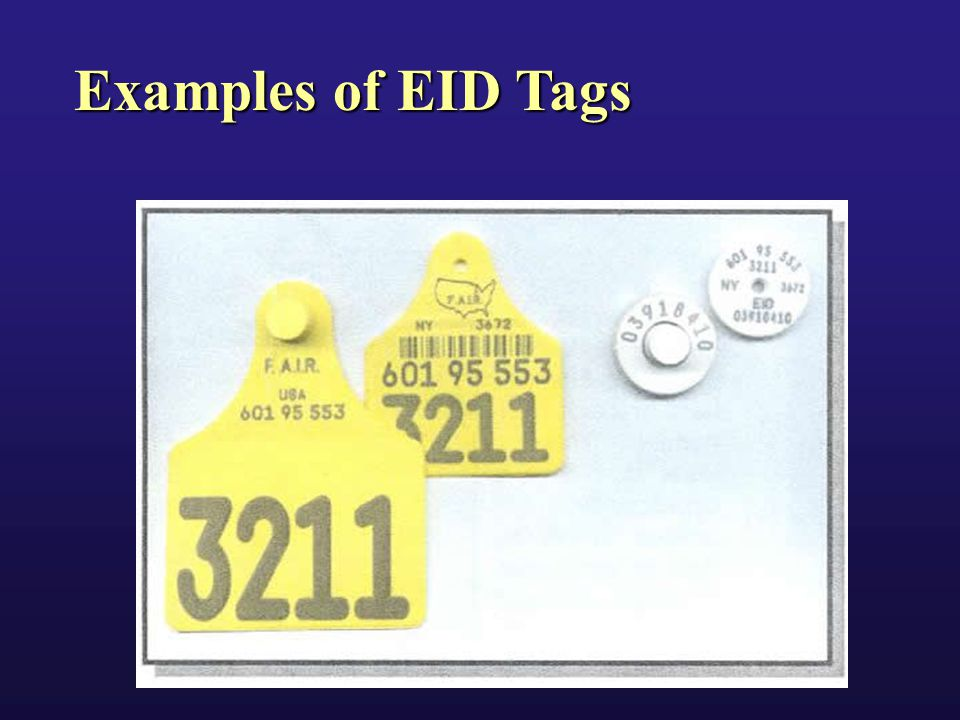 Examples of EID Tags