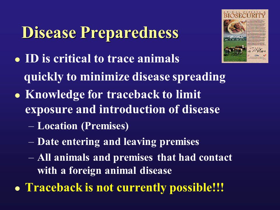 Examples of Disease Eradiation, Control and Certification Programs Tuberculosis Brucellosis Scrapies Pseudorabies Johne's Disease Exotic Newcastle Disease