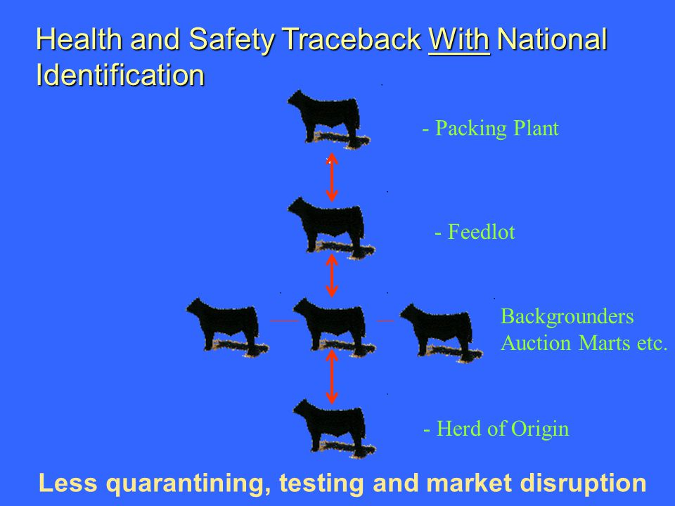 Health and Safety Traceback With National Identification Less quarantining, testing and market disruption - Packing Plant - Feedlot - Herd of Origin Backgrounders Auction Marts etc.