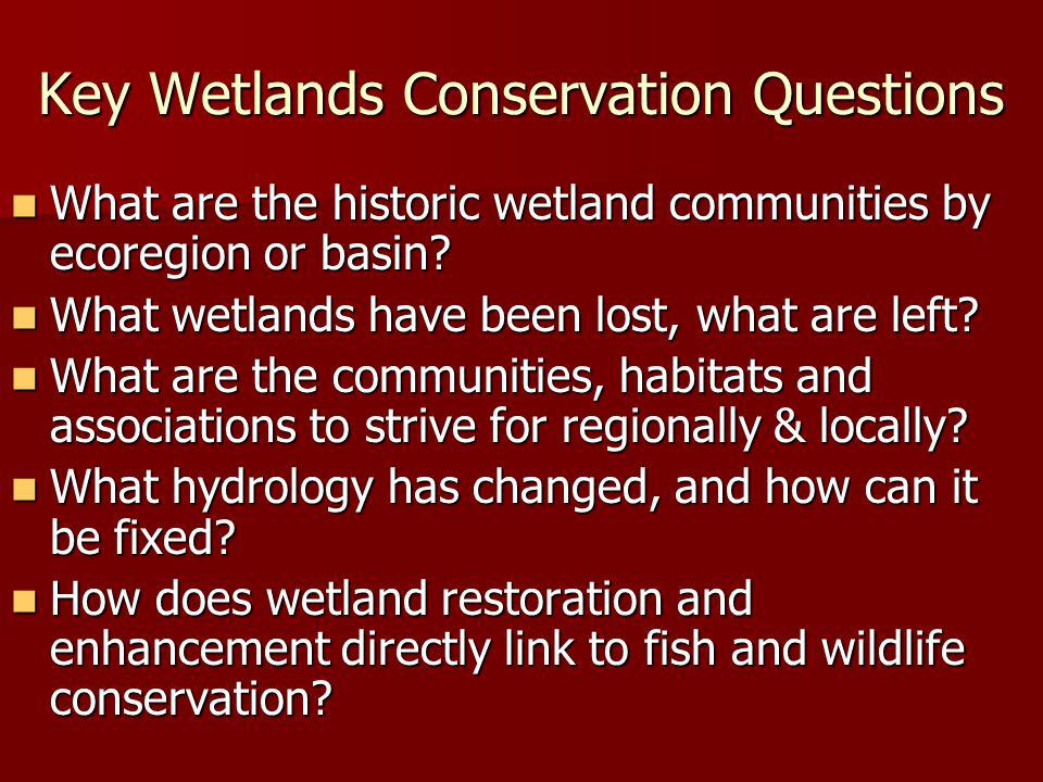 Key Wetlands Conservation Questions What are the historic wetland communities by ecoregion or basin? What are the historic wetland communities by ecor