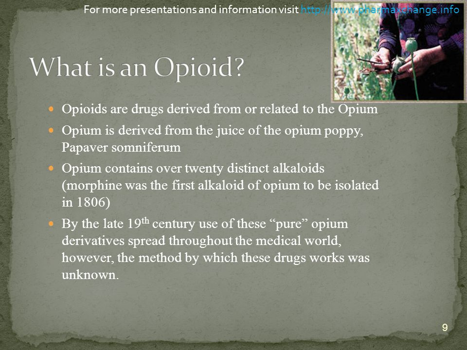 Opioids are drugs derived from or related to the Opium Opium is derived from the juice of the opium poppy, Papaver somniferum Opium contains over twen