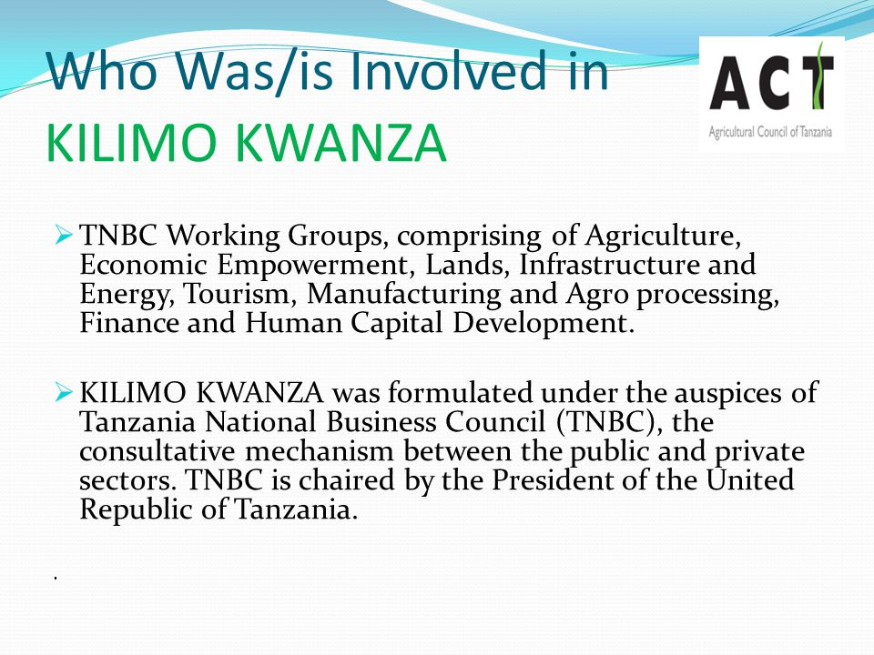 Who Was/is Involved in KILIMO KWANZA  TNBC Working Groups, comprising of Agriculture, Economic Empowerment, Lands, Infrastructure and Energy, Tourism