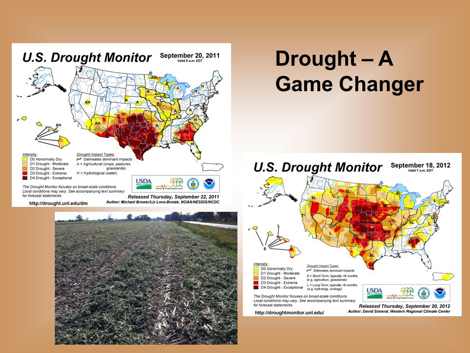 Data Source: USDA-FAS, Compiled & Analysis by LMIC