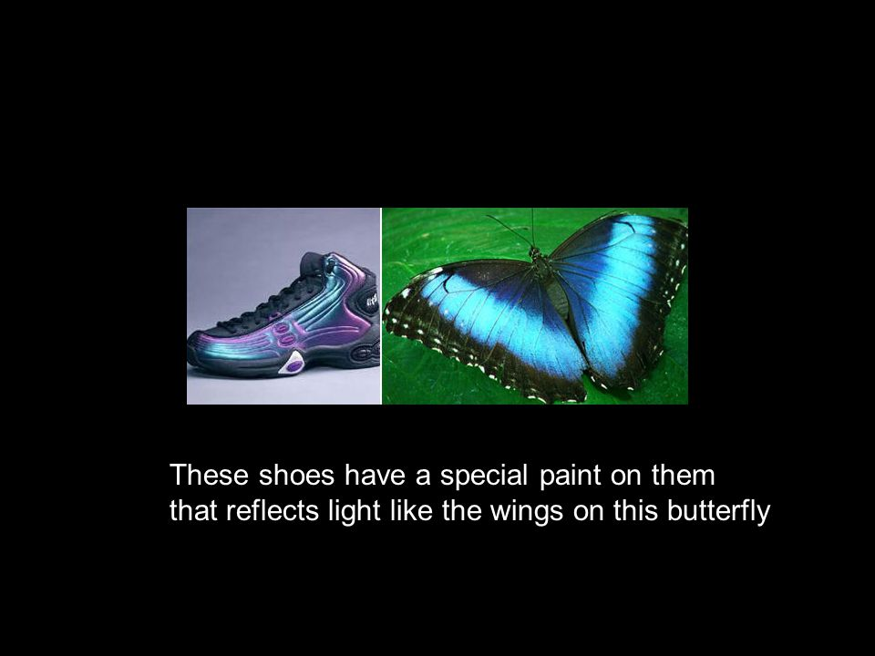 These shoes have a special paint on them that reflects light like the wings on this butterfly