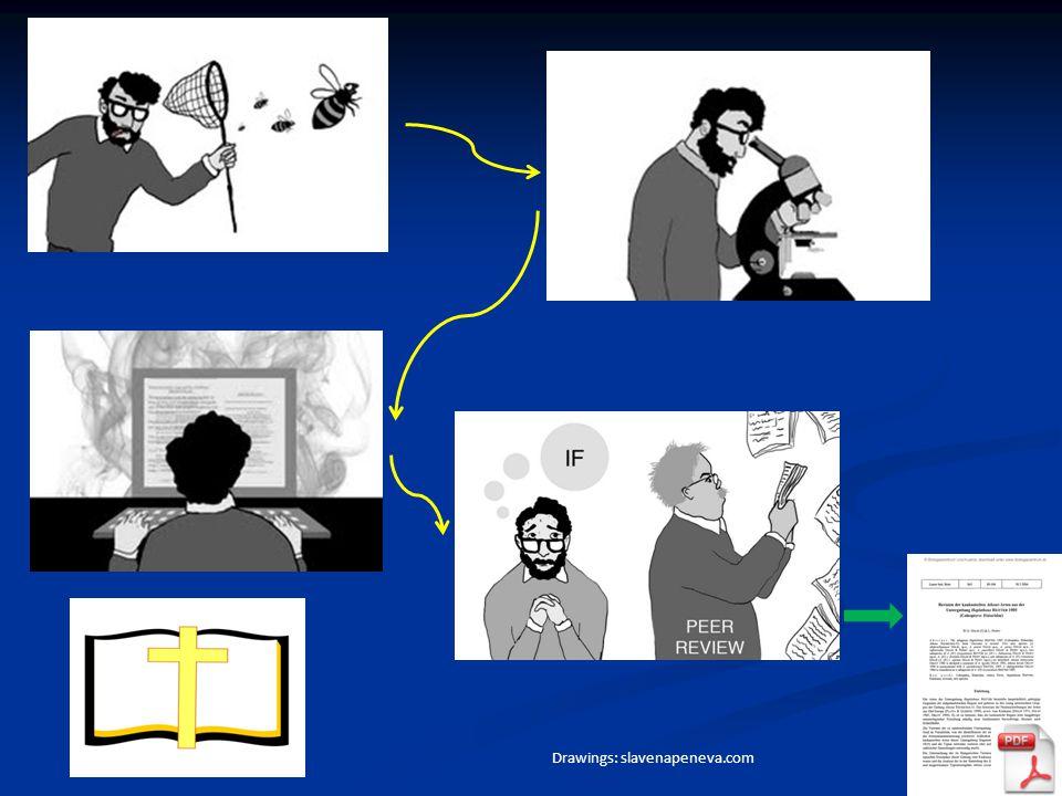 Primary data Drawings: slavenapeneva.com