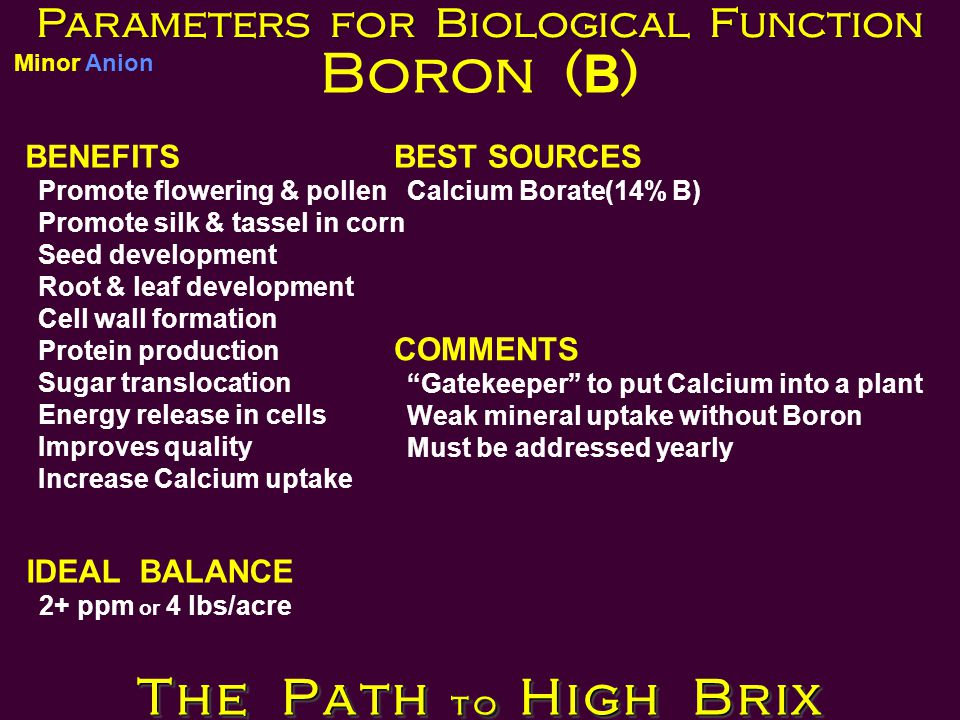 Parameters for Biological Function Boron ( B ) BENEFITS Promote flowering & pollen Promote silk & tassel in corn Seed development Root & leaf development Cell wall formation Protein production Sugar translocation Energy release in cells Improves quality Increase Calcium uptake BEST SOURCES Calcium Borate(14% B) IDEAL BALANCE 2+ ppm or 4 lbs/acre COMMENTS Gatekeeper to put Calcium into a plant Weak mineral uptake without Boron Must be addressed yearly The Path to High Brix Minor Anion